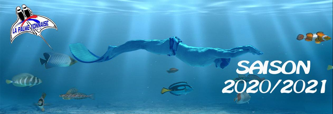 sport_diving